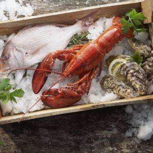 Hóa chất ngành thủy hải sản